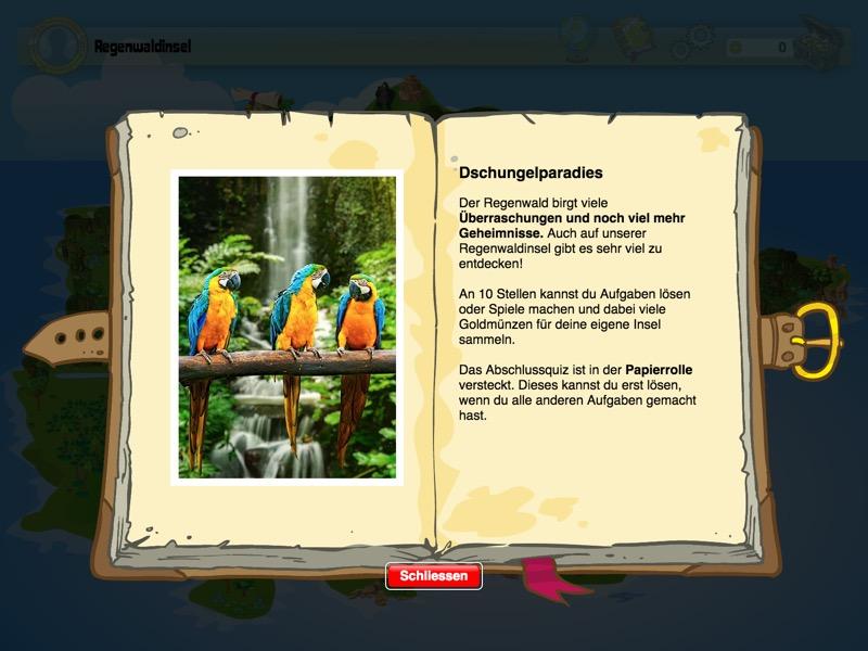 JUNIOR-Xplore Regenwaldinsel Background 2