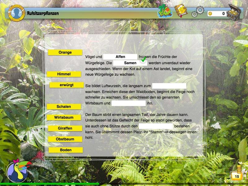 JUNIOR-Xplore Regenwaldinsel Background 5
